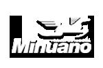 Logo Transportadora Minuano